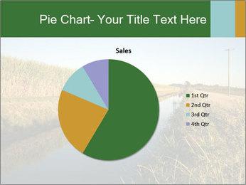 A sugar cane field PowerPoint Template - Slide 36