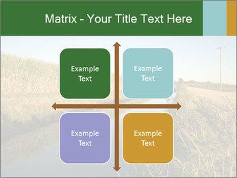 A sugar cane field PowerPoint Template - Slide 37