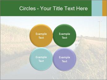 A sugar cane field PowerPoint Template - Slide 38