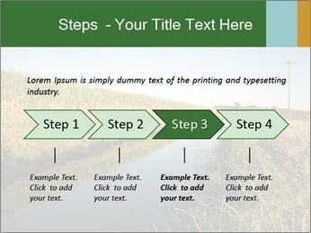 A sugar cane field PowerPoint Template - Slide 4