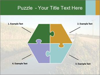 A sugar cane field PowerPoint Template - Slide 40