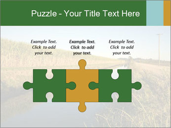A sugar cane field PowerPoint Template - Slide 42