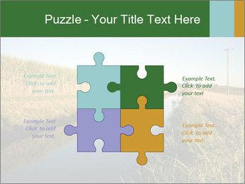 A sugar cane field PowerPoint Template - Slide 43