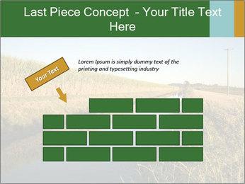A sugar cane field PowerPoint Template - Slide 46