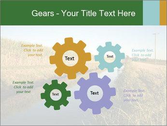 A sugar cane field PowerPoint Template - Slide 47