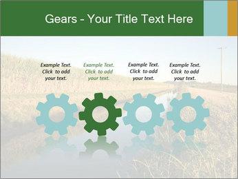 A sugar cane field PowerPoint Template - Slide 48