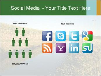A sugar cane field PowerPoint Template - Slide 5
