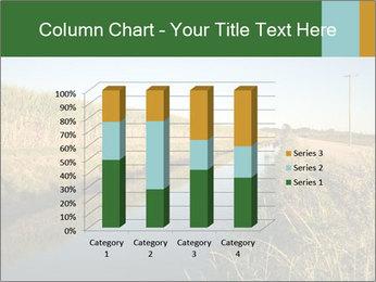 A sugar cane field PowerPoint Template - Slide 50