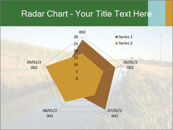 A sugar cane field PowerPoint Template - Slide 51