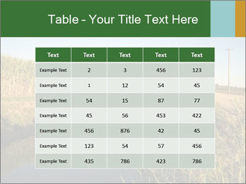 A sugar cane field PowerPoint Template - Slide 55