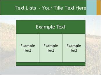 A sugar cane field PowerPoint Template - Slide 59