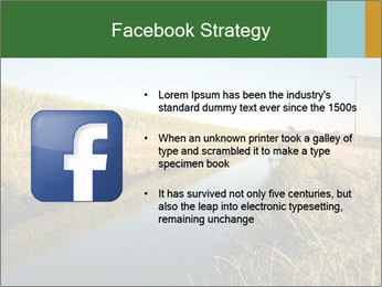 A sugar cane field PowerPoint Template - Slide 6