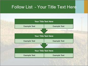 A sugar cane field PowerPoint Template - Slide 60