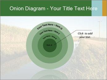 A sugar cane field PowerPoint Template - Slide 61