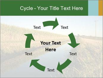 A sugar cane field PowerPoint Template - Slide 62