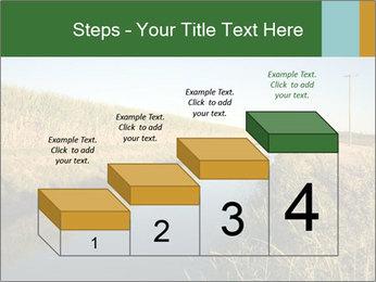A sugar cane field PowerPoint Template - Slide 64