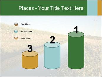 A sugar cane field PowerPoint Template - Slide 65