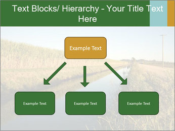 A sugar cane field PowerPoint Template - Slide 69