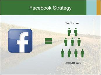 A sugar cane field PowerPoint Template - Slide 7