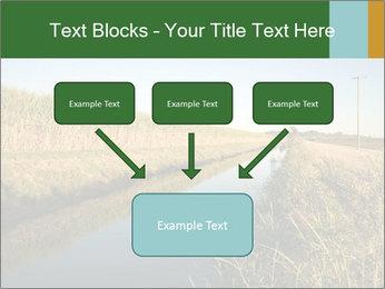 A sugar cane field PowerPoint Template - Slide 70