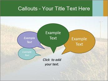 A sugar cane field PowerPoint Template - Slide 73