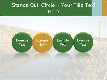 A sugar cane field PowerPoint Template - Slide 76
