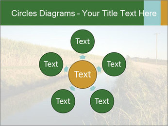 A sugar cane field PowerPoint Template - Slide 78