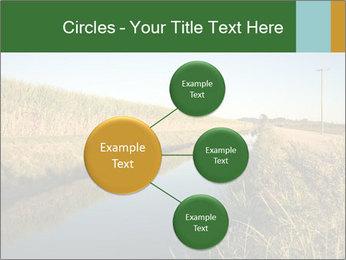 A sugar cane field PowerPoint Template - Slide 79