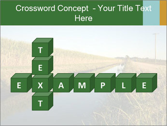 A sugar cane field PowerPoint Template - Slide 82
