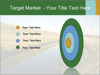 A sugar cane field PowerPoint Template - Slide 84
