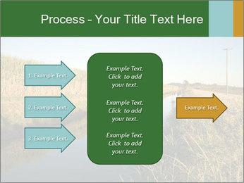A sugar cane field PowerPoint Template - Slide 85