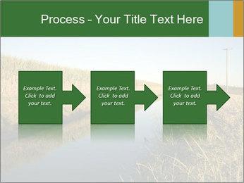 A sugar cane field PowerPoint Template - Slide 88
