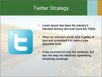 A sugar cane field PowerPoint Template - Slide 9