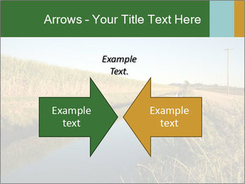 A sugar cane field PowerPoint Template - Slide 90