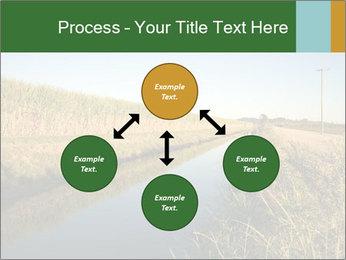 A sugar cane field PowerPoint Template - Slide 91