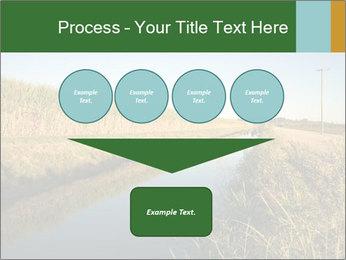 A sugar cane field PowerPoint Template - Slide 93