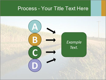 A sugar cane field PowerPoint Template - Slide 94