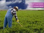 Farmer cultivating PowerPoint Templates
