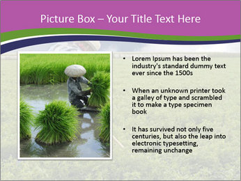 Farmer cultivating PowerPoint Template - Slide 13