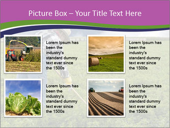Farmer cultivating PowerPoint Template - Slide 14