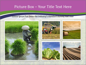 Farmer cultivating PowerPoint Template - Slide 19