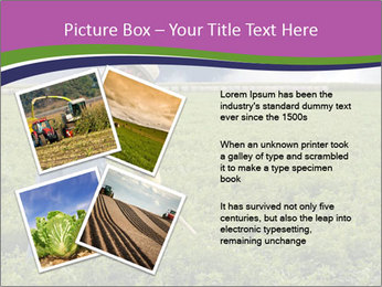 Farmer cultivating PowerPoint Template - Slide 23