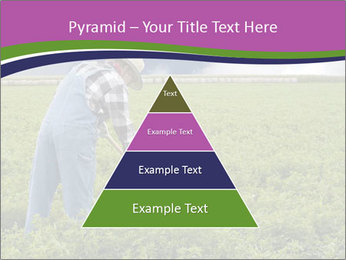 Farmer cultivating PowerPoint Template - Slide 30