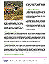 0000090806 Word Template - Page 4