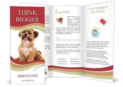 0000090807 Brochure Template