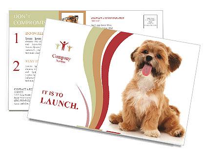 0000090807 Postcard Templates