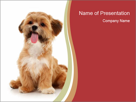 Female dog PowerPoint Template