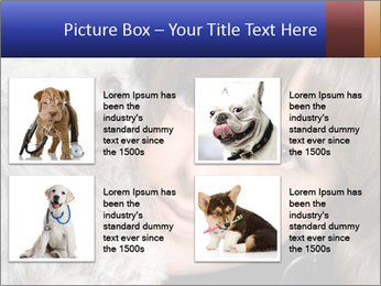 Grey poodle PowerPoint Template - Slide 14