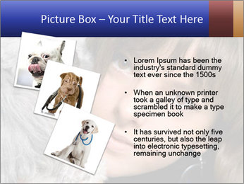 Grey poodle PowerPoint Template - Slide 17