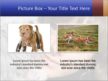Grey poodle PowerPoint Template - Slide 18